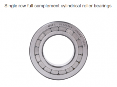 Types of Full Complement Cylindrical Roller Bearing